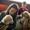 Pooches on campus: Colleges host dog visits, create pet-friendly dorms to ease student stress