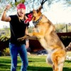New Pets Rock Collection for Petsmart | Bret Michaels