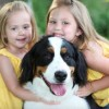 Dogs Reduce Stress in Kids with Autism