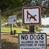 Lake Algae a threat to pets there humans