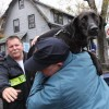 Foster a pet stranded after Hurricane Sandy