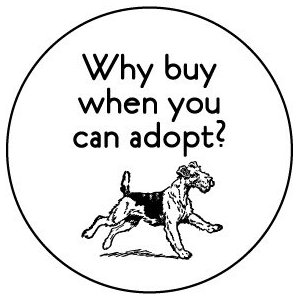 Why buy when you can adopt?