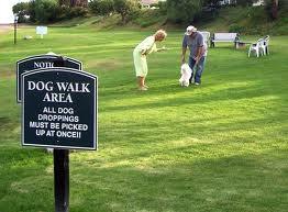 Landscape Architects Design Parks for Pets