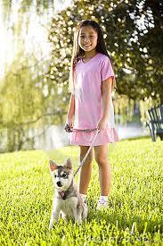 Girl walking puppy on leash